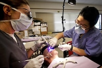 Air Force Maj. Jessica Bramlette, left, and Army Spc. Zhuhying Deng provide dental care to a patient during the Greater Chenango Cares Innovative Readiness Training at the Homer Intermediate School in Homer, N.Y., July 20, 2016. Bramlette is a dentist assigned to the New Jersey Air National Guard's 177th Medical Group. Deng is a dental assistant assigned to the Army Reserve's 7234th Medical Support Unit. Air National Guard photo by Tech. Sgt. Matt Hecht