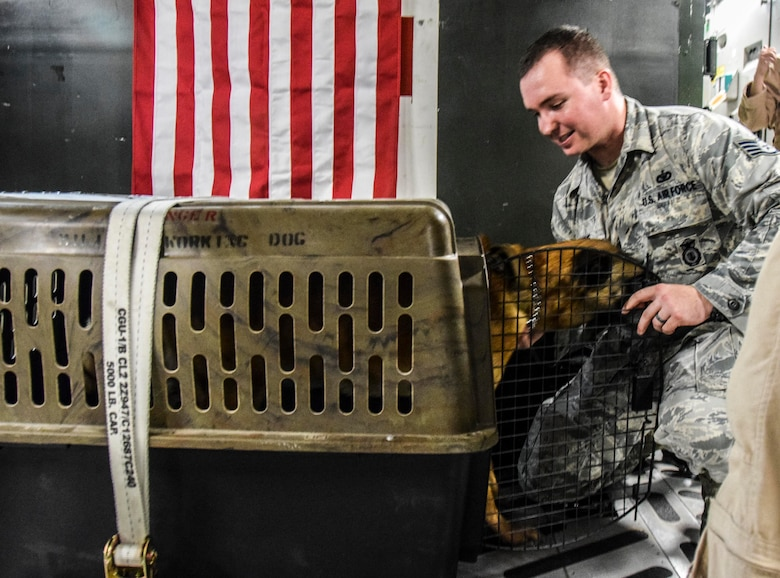 Staff Sgt. Christopher Hotine, 380th Expeditionary Security Forces Squadron military working dog handler, talks to his military working dog VVass to reassure him as he enters his kennel prior to their medical evacuation July 18, 2016, at Al Udeid Air Base, Qatar, via a C-17 Globemaster III to receive advanced veterinary care in Germany. The 379th Expeditionary Medical Group Enroute Patient Staging Facility hosted MWD VVass, Hotine, and several other patients before their flight. (U.S. Air Force photo/Technical Sgt. Carlos J. Treviño)