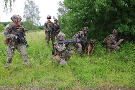 A French Army dog handler and U.S. Marines with Charlie company, 1st Battalion 8th Marine Regiment, Special Purpose Marine Air-Ground Task Force-Crisis Response-Africa observe enemy activity during a combined arms attack aboard Camp Sissonne, France, June 21, 2016. CENZUB provided SPMAGTF-CR-AF Marines with the ability to maintain their proficiencies in urban combat and integrate with French personnel and assets in a realistic scenario. (U.S. Marine Corps photo by Sgt. Kassie McDole/Released.)