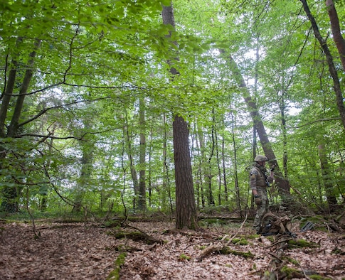 Staff Sgt. Andrew Trelly, 786th Civil Engineering Squadron explosive ordnance disposal technician, observes terrain as he navigates through a forest to find improvised explosive devices July 26, 2016, at Ramstein Air Base, Germany. Trelly participated in a field training exercise for EOD Airmen, a week-long event where EOD Airmen stay up to date on their job and maintain mission readiness. (U.S. Air force photo/Airman 1st Class Lane T. Plummer)