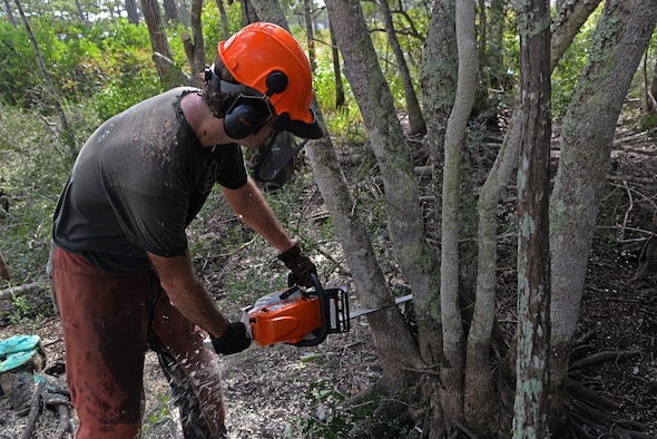 A volunteer for the reticulated flatwoods salamander habitat restoration project cuts down a tree to remove excess growth from within the pond limits at Hurlburt Field, Fla., July 28, 2016. Reticulated flatwoods salamanders thrive in a healthy habitat of seasonal wetland ponds within a sparse longleaf pine ecosystem (Courtesy photo)