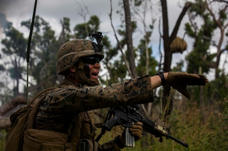 U.S. Marine Corps Forces, Pacific > Units > Marine Rotational ...