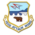 163d Attack Wing shield