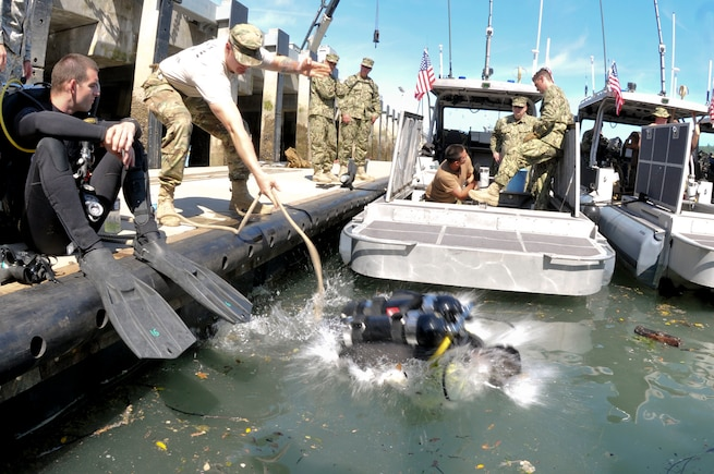 Spc. Michael Sigley, a diver with the 569th Engineer Dive Detachment, plunges into the Port of Tacoma to inspect a small tugboat during the Joint Logistics Over the Shore training, June 7. Members from the detachment assisted units from Fort Eustis, Va. and the Washington State Army Reserve and National Guard during the JLOTS training. The exercise provides the opportunity for units to test the loading and offloading of ships in areas where ports are unavailable or damaged. (U.S. Army photo by Sgt. Eliverto V Larios)