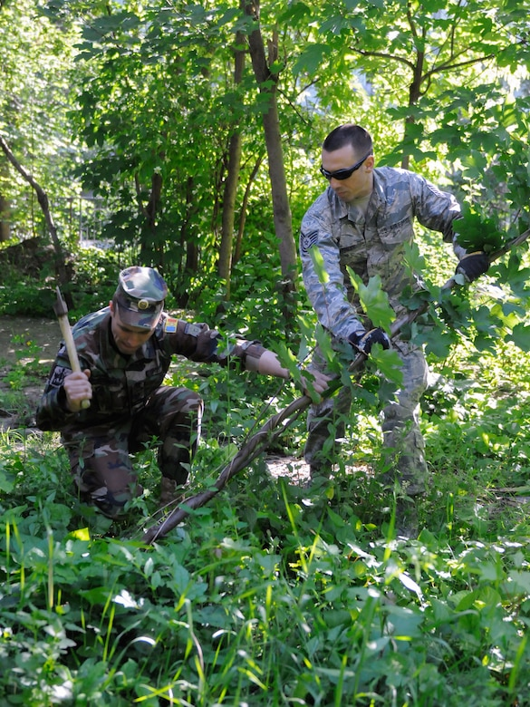 A soldier from the Moldovan National Army works side by side with an Airman from the the Kentucky Air National Guard's 123rd Civil Engineer Squadron to clear away brush behind Special School #12 in Chisinau, Moldova, June 8, 2016. More than 35 Airmen from the Kentucky unit are renovating the institution, which is the only school in Moldova specifically for deaf and special-needs students. The humanitarian project is a partnership with the Office of Defense Cooperation and U.S. European Command, with funds being provided by the National Guard Bureau. (U.S. Air National Guard photo by Tech. Sgt. Vicky Spesard)
