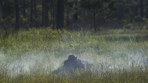 A Marine with 3rd Battalion, 6th Marine Regiment lays in the cover of smoke from a simulation artillery round during the battalions Marine Corps Combat Readiness Evaluation, at Marine Corps Base Camp Lejeune, North Carolina,  June 10, 2016. The MCCRE, a pre deployment exercise, tests the Marines on operational readiness and their ability to operate as a whole.