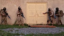 A fire team of Marines with Company C, 6th Engineer Support Battalion, 4th Marine Logistics Group, Marine Forces Reserve, and commandos with 131 Commando Squadron Royal Engineers, British army, prepare to clear a high-threat building during a simulated raid on an urban compound at exercise Red Dagger at Fort Indiantown Gap, Penn., June 13, 2016. Red Dagger is a bilateral training exercise that gives Marines an opportunity to exchange tactics, techniques and procedures as well as build working relationships with their British counterparts.