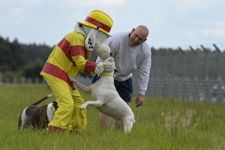 Sparky the Fire Dog and U.S. Air Force Master Sgt. Matthew Deel, 100th Civil Engineer Squadron facility superintendent, play with his dogs after the opening of the new dog park June 16, 2016, on RAF Mildenhall, England. The park enables Airmen and their families to exercise and play with their dogs in a safe environment on base. (U.S. Air Force photo by Staff Sgt. Micaiah Anthony/Released)