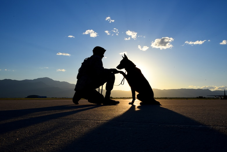 Senior Airman Tariq Russell, 21st Security Forces Squadron military working dog handler, shakes hands with his partner, Ppaul, at Peterson Air Force Base, Colo., June 14, 2016. Military working dog handlers are assigned one dog for their entire duration at Peterson AFB. (U.S. Air Force photo by Airman 1st Class Dennis Hoffman)