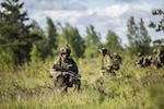 Multinational force standards allow NATO troops to apply firepower at the precise moment needed at Adazi Military Base, Latvia, June 18, 2016. Exercise Saber Strike 16  was an exercise with more than 10,000 service members from the U.S. and 12 NATO partner nations.