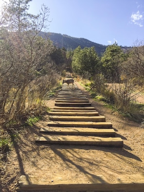 The Manitou Springs Incline offers a challenging but rewarding experience to Coloradans and tourists alike. However, trekking at a great destination spot like the incline requires hikers to follow the rules. (Courtesy photo/Tech. Sgt. Julius Delos Reyes)