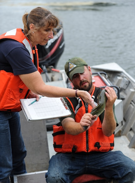 Trish Yasger, left, a fisheries biologist with the Missouri Department of Conservation (MDC), and Ty Cravens, right, a resource assistant with MDC, inspect a fish from the Ike Skelton Lake at Whiteman Air Force Base, Mo., June 21, 2016. The team used electrofishing, which is a scientific survey method designed to sample fish populations to determine abundance, density and species composition. (U.S. Air Force photo by Senior Airman Danielle Quilla)