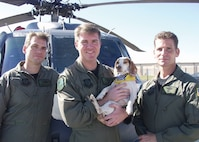 "PATRICK AIR FORCE BASE, Fla.- 920th Rescue Wing members Maj. Robert Haston (left), Capt. Michael Brasher (center), and Senior Master Sgt. Pete Callina (right) pose with the brave beagle that aided their rescue efforts in New Orleans during Hurricane Katrina operations. Renamed ""Katrina"", the canine was reunited with the crew after Captain Brasher and his wife conducted their own search and rescue mission Dec. 3, 2015. (U.S. Air Force file photo/Senior Airman Heather L. Kelly)"