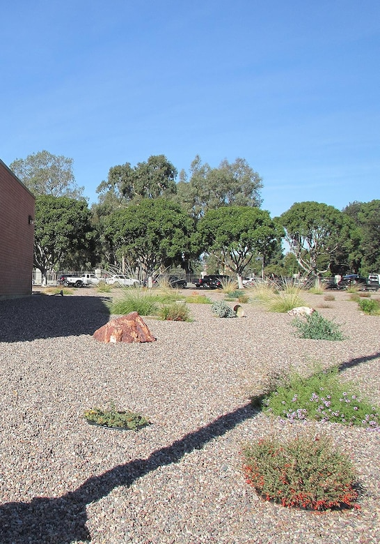 The U.S. Army Reserve's 63rd Regional Support Command installed a xeriscape at Holderman Hall Reserve Center in Los Angeles, California. This xeriscape features plants that are adapted to the unique climate conditions and environmental characteristics of southern California, so they require less water and maintenance. Photo courtesy of Varun Sood, 63rd RSC.