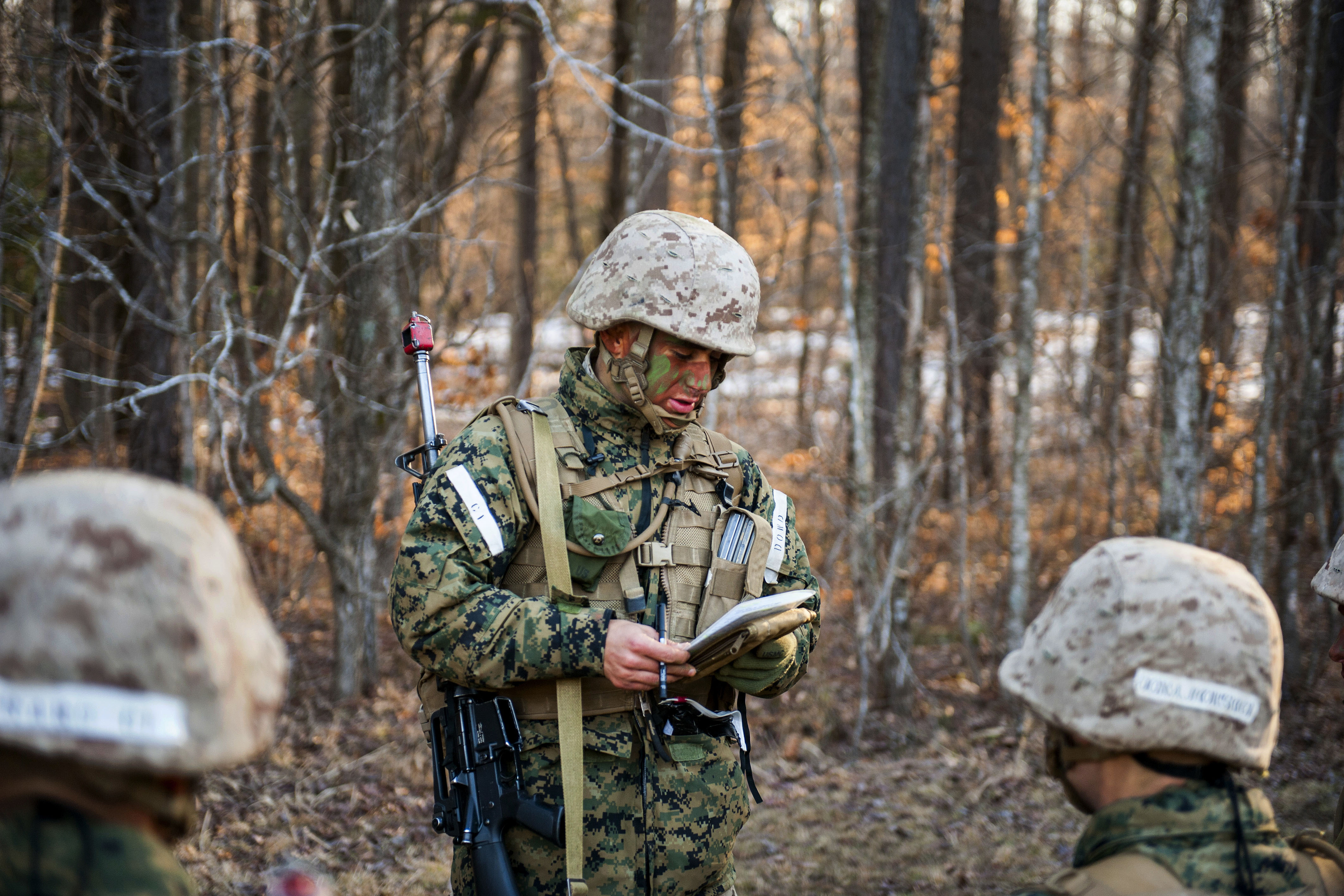 marine corps officer essay Check out our top free essays on marine corps to help you write your own essay.