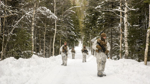Marines with Black Sea Rotational Force scan the area on a security patrol during Exercise Cold Response 16 near Namsos, Norway, Mar. 4, 2016. The exercise is a Norwegian invitational previously-scheduled exercise that involves approximately 16,000 troops from 13 NATO and partner countries.