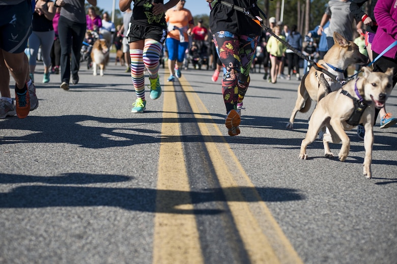 Participants begin the Family & Furry Friends 5k, March 5, 2016, at Moody Air Force Base, Ga. To encourage health and wellness,  various fruits were available for attendees, as well as dog treats for the furry friends. (U.S. Air Force photo by Airman 1st Class Lauren M. Johnson)