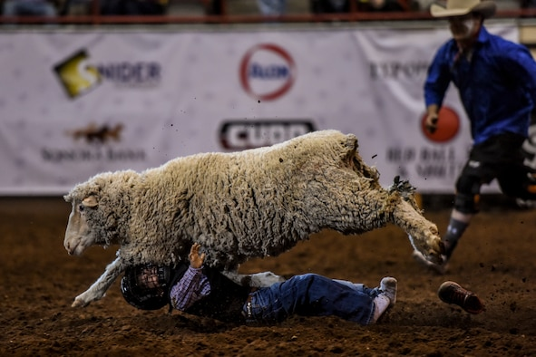 A young local resident loses a shoe after falling off a sheep during the Mutton Bustin' event as part of the 84th annual San Angelo Stock Show and Rodeo at Foster Communications Coliseum in San Angelo, Texas, Feb. 17, 2016. Participants for the event come from local and surrounding area elementary schools. (U.S. Air Force photo by Senior Airman Devin Boyer/Released)
