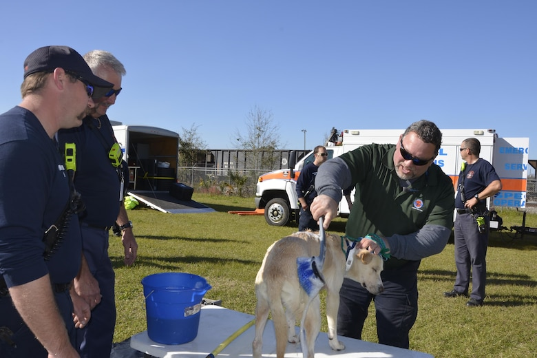"During an animal-related disaster-response workshop at the Bay County Fairgrounds Feb. 28, a Bay County Animal Services worker ""decontaminates"" a dog suspected of being exposed to ""toxins"" during the workshop scenario.  Hosted by the Florida State Agricultural Response Team and Bay County Emergency Services, the event brought together a wide variety of emergency-response agencies and focused on practicing providing disaster response assistance not only to people, but also animals."