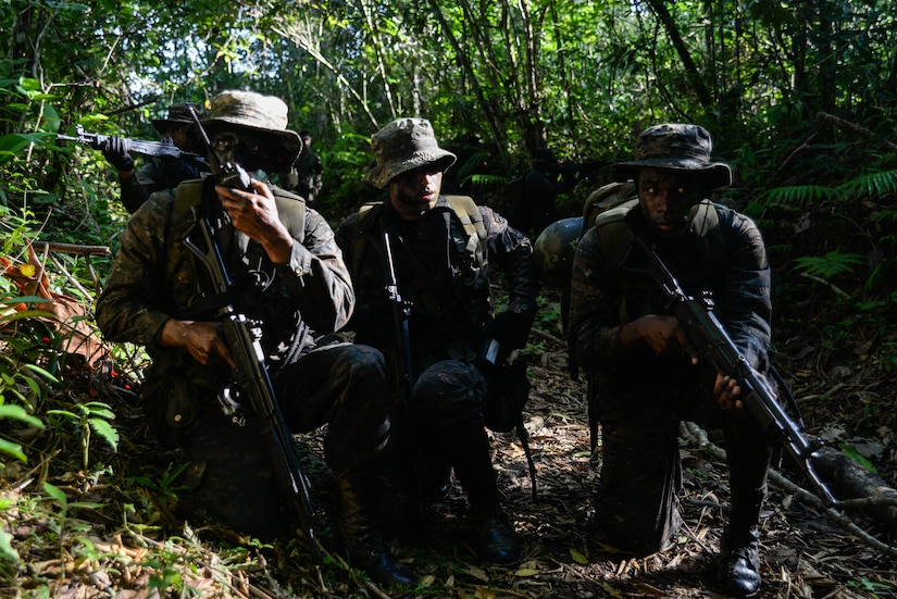 Guatemalan marines communicate with a second team during a training exercise March 9, 2016, Guatemala testing their abilities to coordinate squad-level movements. The Guatemalan marines partnered with Marines from a U.S. Marine Security Cooperation Team, to exchange best practices and techniques for countering transnational criminals. (U.S. Air Force photo by Staff Sgt. Westin Warburton/RELEASED)