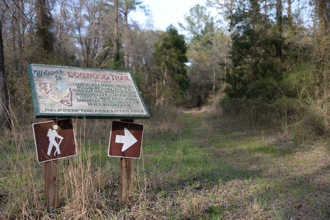 Three trails, Dogwood, Willowoak and Sparkleberry, offer unique wildlife along their respective paths on Columbus Air Force Base, Mississippi. The hike includes a self-guided tour with a trail book outlining the types of native plants found at the marked signs. (U.S. Air Force photo/Airman 1st Class John Day)