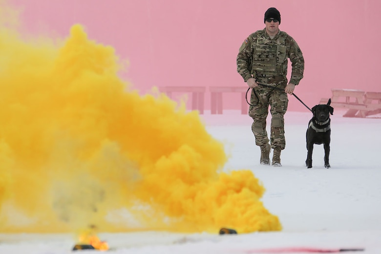 U.S. Army Spc. Jared Schultz and military working dog, Teddy, assigned to the 549th Military Working Dog Detachment, conduct K-9 training at Joint Base Elmendorf-Richardson, Alaska, March 17, 2016. The Army military working dog handlers conducted the K-9 training with their Air Force counterparts, assigned to the 673d Security Forces Squadron, to keep their teams flexible to respond to law enforcement emergencies and for overseas deployments. (U.S. Air Force photo/Alejandro Peña)