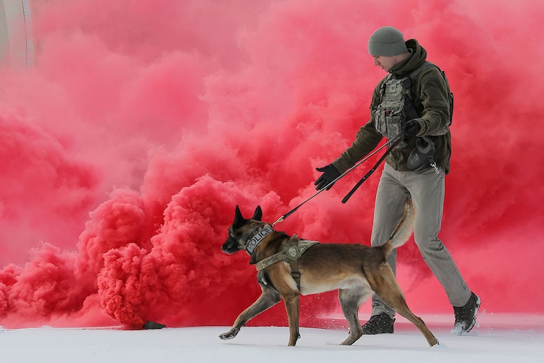 U.S. Air Force Staff Sgt. Joe Burns and military working dog, Ciko, assigned to the 673d Security Forces Squadron, conduct K-9 training at Joint Base Elmendorf-Richardson, Alaska, March 17, 2016. The Security Forces Airmen conducted the K-9 training with their Army counterparts, assigned to the 549th Military Working Dog Detachment, to keep their teams flexible to respond to law enforcement emergencies and for overseas deployments. (U.S. Air Force photo/Alejandro Peña)