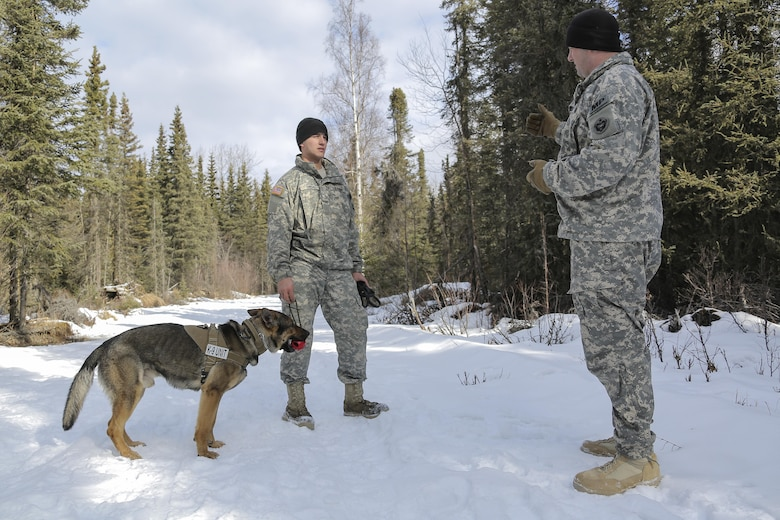 Army Staff Sgt. Daniel Turner, right, debriefs Army Pfc. Ian Smith after successfully detecting hidden simulated explosive devices during K-9 training at Joint Base Elmendorf-Richardson, Alaska, March 17, 2016. Turner is his detachment's kennel master and Smith is a dog handler assigned to the 549th Military Working Dog Detachment. Air Force photo by Alejandro Pena