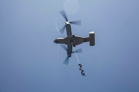 U.S., Thai, and Republic of Korea Marines conduct Special Patrol Insertion/Extraction (SPIE) rigging exercise during Cobra Gold 16, Sattahip, Thailand, Feb. 12, 2016.  SPIE system was developed as a means to rapidly insert and/or extract a reconnaissance patrol from an area that does not permit a helicopter to land.  Cobra Gold, in its 35th iteration, is designed to advance regional security and ensure effective responses to regional security crises by bringing together a robust combined task force from partner nations sharing common goals and security commitments in the Indo-Asia-Pacific.  (Photo by GySgt Ismael Pena/Released)