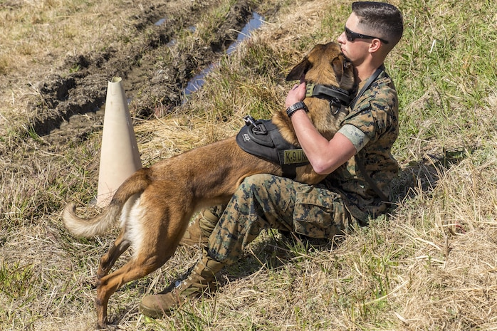 Lance Cpl. Landon Gilliam, Provost Marshal's Office military working dog handler with Headquarters and Headquarters Squadron, embraces his K-9 during joint training held at Marine Corps Air Station Iwakuni, Japan, March 22, 2016. Trained in a variety of areas such as locating explosives and narcotics and conducting patrols, handlers and their military working dogs train regularly in order to maintain operational readiness, become a more effective team and ensure the safety of station residents. U.S. and Japanese handlers escorted their K-9's to locate explosives hidden throughout the station's landfill and harbor areas. (U.S. Marine Corps photo by Lance Cpl. Aaron Henson/Released)
