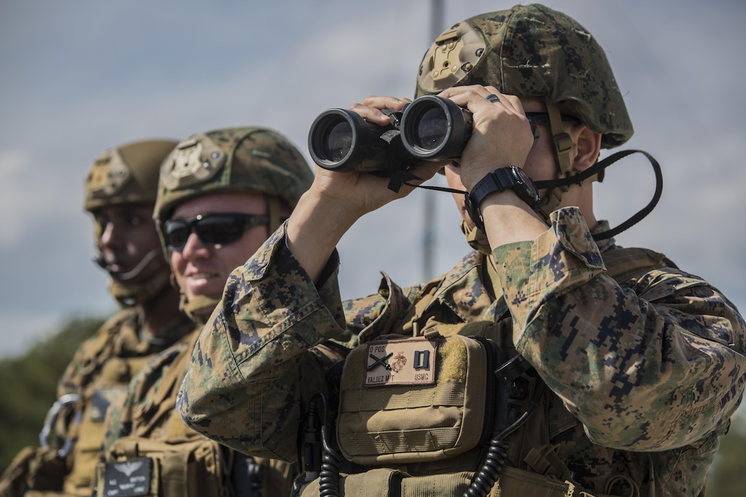 U.S. Marines with 2nd Air Naval Gunfire Liaison Company oversee a joint tactical air control operation at  Camp Lejeune, N.C., March 25, 2016. The training enhanced interoperability between the U.S., French, British, and Dutch forces, while the U.S. Marines provided fire and aviation support.  (U.S. Marine Corps photo by Lance Cpl. Erick Galera/Released)