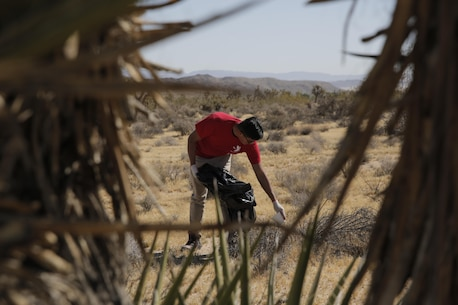 Marines helped restore the Gateway Parcel during the Mojave Desert Land Trust Earth Day Restoration in Joshua Tree, California.