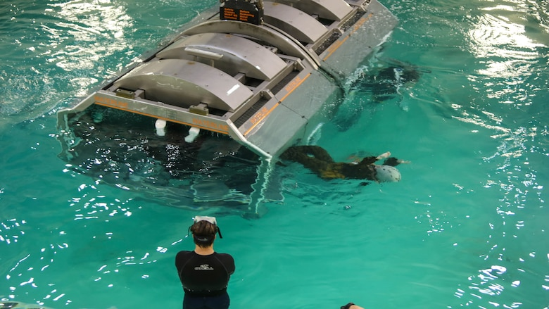 Marines with Marine Medium Tiltrotor Squadron 264 escape the cage after it sinks and flips upside down during water survival training at Marine Corps Base Camp Lejeune, Apr. 28, 2016. The Marines used a simulated helicopter body while training for different underwater escape scenarios as qualification to be attached to a Marine Expeditionary Unit.