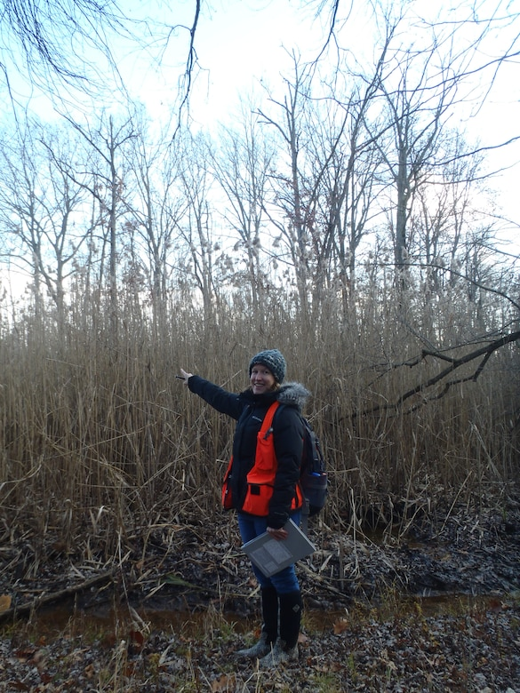 U.S. Army Corps of Engineers, Buffalo District Biologist Melissa Tarasiewicz has been selected to assist with the development and management of the National Wetland Plant List (NWPL) at the Cold Regions Research and Engineering Laboratory (CRREL), Hanover NH.