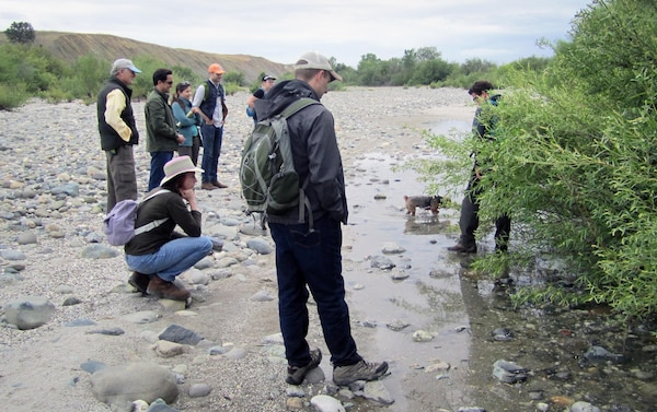 Members of South Yuba River Citizens League and the U.S. Army Corps of Engineers Sacramento District's Yuba River Ecosystem Restoration Study team confer during a May 5 tour of SYRCL restoration work at Hammon Bar on the Yuba River.