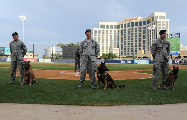 "Tech. Sgt. James Martin, Staff Sgt. Javonnia Peak and Senior Airman Timothy Dawson, 81st Security Forces Squadron military working dog handlers, stand at ease with their military working dogs at MGM Park during a Biloxi Shuckers Minor League Baseball team pre-game ceremony May 9, 2016. The ""Bark in the Park"" themed baseball game invited fans to sit in the outfield seating area with their dogs. (U.S. Air Force photo by Kemberly Groue)"