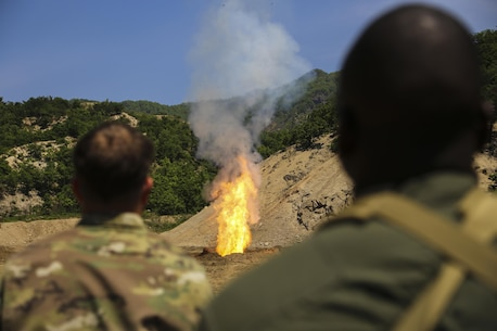 Explosive Ordnance Disposal technician Marine and Soldiers witness a successful ignitions of repellent during Korea EOD Exercise May 14, 2016 at Camp Rodriguez Live Fire Complex, South Korea. EOD performed burning operations to dispose of ammunition that can no longer be used.  This exercise allows them to increase their proficiency and familiarize themselves with different techniques through integration of a different branch. Soldiers are with 718th EOD Company, 23rd Chemical Battalion, 48th Chemical Brigade. Marines are with 3rd EOD Company, 9th Engineer Support Battalion, III Marine Expeditionary Force. (U.S. Marine Corps photo by Cpl. Isaac Ibarra/Released)