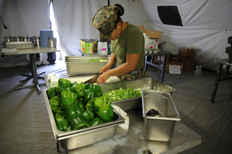 Lance Cpl. Sanchez chops vegetables in preparation for serving more than 300 Marines at evening chow during Marine Expeditionary Force Exercise 2016, at Marine Corps Air Station Cherry Point, N.C., May 11, 2016. MEFEX 16 is designed to synchronize and bring to bear the full spectrum of II MEF's command and control capabilities in support of a Marine Air-Ground Task Force. (U.S. Marine Corps photo by Lance Cpl. Mackenzie Gibson/Released)