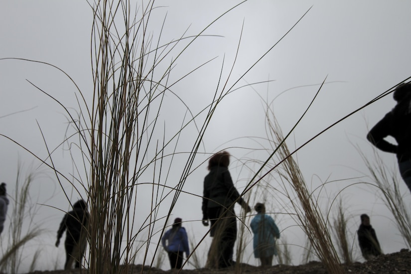 "PORTSMOUTH, Va. -- Students from Portsmouth's I.C. Norcom High School survey the wetland grasses they planted on the Norfolk District, U.S. Army Corps of Engineers' Craney Island Dredged Material Management Area here April 28, 2016. The district's STEM team partnered with the Elizabeth River Project's ""Wetlands in the Classroom"" program, which allows students to grow wetland plants in their classroom and then transplant them to a local area.