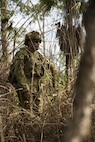 Australian Army Pvt. Shane Gibbons searches through the thicket at Hidden Valley Motor Sports Complex, Northern Territory, Australia, on May 19, 2016. U.S. Marine and Australian Army combat engineers conducted clearing training to find improvised explosive device and caches. Marine Rotational Force - Darwin is a six-month deployment of Marines into Darwin, Australia, where they will conduct exercises and train with the Australian Defence Forces, strengthening the U.S.-Australia alliance. Gibbons, from Mackay, Queensland, Australia, is with 1st Combat Engineer Regiment, 1st Brigade.