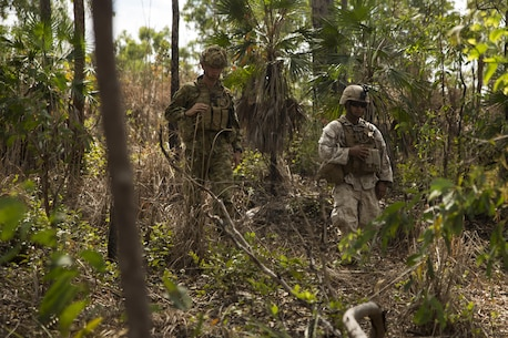 Australian Army Pvt. Jayden S. Oldride and U.S. Marine Cpl. Ernesto Argote, combat engineers, search through the thicket at Hidden Valley Motor Sports Complex, Northern Territory, Australia, on May 19, 2016. U.S. Marine and Australian Army combat engineers conducted clearing training to find improvised explosive device and caches. Marine Rotational Force - Darwin is a six-month deployment of Marines into Darwin, Australia, where they will conduct exercises and train with the Australian Defence Forces, strengthening the U.S.-Australia alliance. Oldride, from Campbelltown, New South Wales, Australia, is with 1st Combat Engineer Regiment, 1st Brigade. Argote, from Los Angeles, California, is with 1st Combat Engineer Battalion, MRF-D.