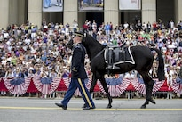 "A soldier from the 3rd U.S. Infantry Regiment, known as ""The Old Guard,"" leads a riderless horse during the Memorial Day parade in Washington, D.C., May 27, 2013. The riderless horse carries a soldier's boots reversed in the stirrups. Army photo by Staff Sgt. Teddy Wade"