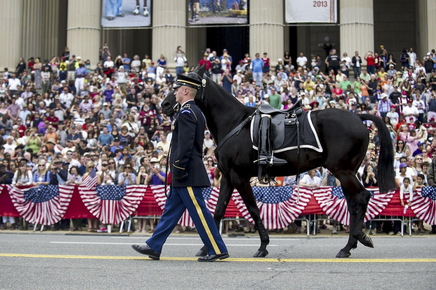 A soldier leading a riderless horse.