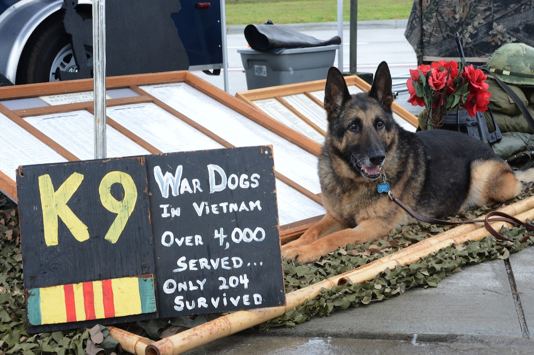 """Luke, a retired military working dog, sits next to the U.S. War Dogs Association display at the 2016 Shaw Air Expo and open house, nicknamed """"Thunder Over the Midlands,"""" at Shaw Air Force Base, S.C., May 21, 2016. (U.S. Air Force photo/Senior Airman Zade Vadnais)"""