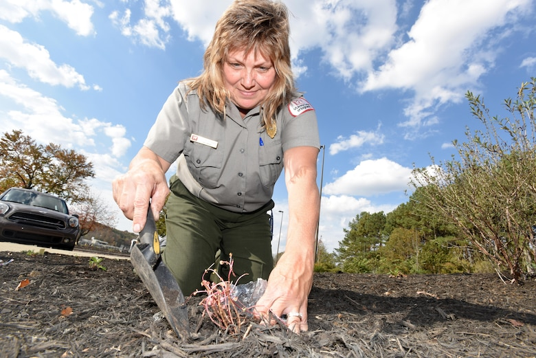 Park Ranger Dina Henninger, an environmental protection specialist in the Operations Division at the U.S. Army Corps of Engineers Nashville District's Cheatham Lake in Ashland City, Tenn., works in a pollinator garden at Cheatham Lake Nov. 2, 2016.  The Nashville District has announced she is the Employee of the Month for September 2016 for organizing a successful National Public Lands Day event Oct. 1 at Cheatham Lake where 60 busy-bee volunteers established new pollinator gardens outside the resource manager's office.
