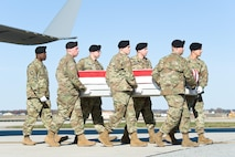A U.S. Army carry team transfers the remains of Army Spc. Ronald L. Murray Jr., of Bowie, Md., during a dignified transfer Nov. 12, 2016, at Dover Air Force Base, Del. Murray was assigned to the 4th Battalion, 1st Field Artillery Regiment, 3rd Armored Brigade Combat Team, 1st Armored Division, Fort Bliss, Texas (U.S. Air Force photo by Roland Balik)