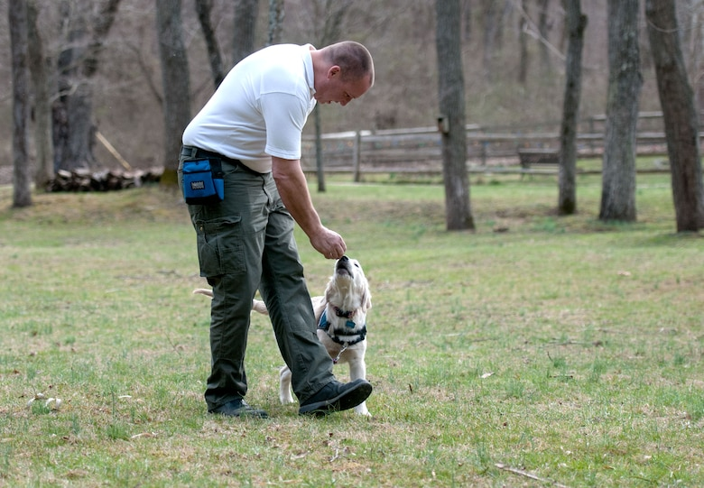 Rick Yount, the executive director of Warrior Canine Connection, trains a young golden retriever at one of the group's sites in Brookville, Md., March 11, 2016. Wounded warriors also help instruct dogs in specialized skills for two years before they are permanently placed to help with another wounded warrior's daily living. (U.S. Air Force photo/Sean Kimmons)