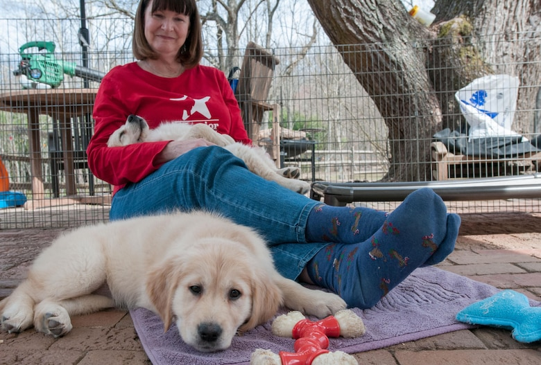 Liz Worthington, a Warrior Canine Connection volunteer, spends time with two golden retriever puppies at one of the nonprofit's sites in Brookville, Md., March 11, 2016. Before puppies embark on a two-year training program, they get plenty of human interaction so they can be a friendly service dog for wounded warriors. (U.S. Air Force photo/Sean Kimmons)