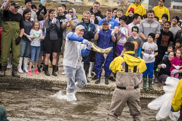U.S. Air Force Col. Travis Rex, the 35th Fighter Wing vice commander, snags a salmon during the opening catching demonstration to the 11th Annual Salmon Festival in Oirase, Japan, Nov. 19, 2016. After catching the salmon, event attendees learned how to properly fillet their prizes. The event included salmon racing, dozens of food booths and numerous music performances. (U.S. Air Force photo by Staff Sgt. Benjamin W. Stratton)