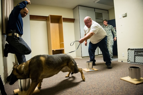 Jerry Houston, International Health Care Security, reacts as his working dog, Axa, is rewarded for successfully detecting homemade explosives Oct. 5 at Hill Air Force Base. The training consisted of explosive compound awareness for handlers and trainers, imprint training for dogs, and detection testing for teams. (U.S. Air Force photo by R. Nial Bradshaw)